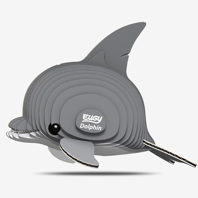 021 Dolphin
