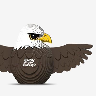 022 Bald Eagle