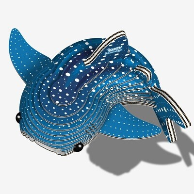 049 Whale Shark