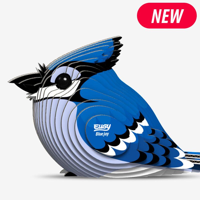 067 Blue Jay