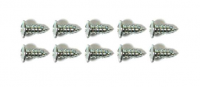 SCREW KIT-WINDSHIELD-A PILLAR WEATHERSTRIP-10 PIECES-68-82 (#E19268) 4B4