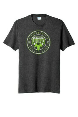 Ladies Area 51 Tee Grey Large