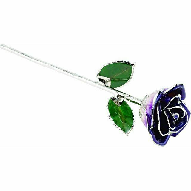 Lacquered Purple Rose with Platinum Trim
