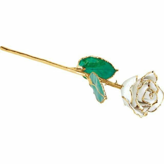 Lacquered Sparkle White Diamond Colored Rose with Gold Trim