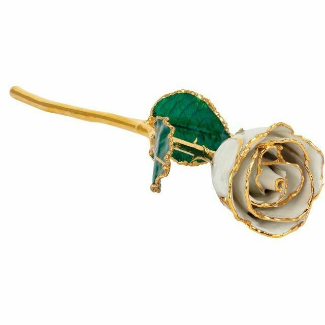Lacquered Pearl Colored Rose with Gold Trim