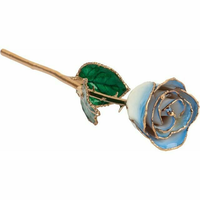 Lacquered Cream Blue Rose with Gold Trim