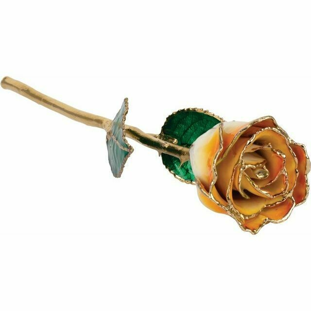 Lacquered Cream Orange Rose with Gold Trim