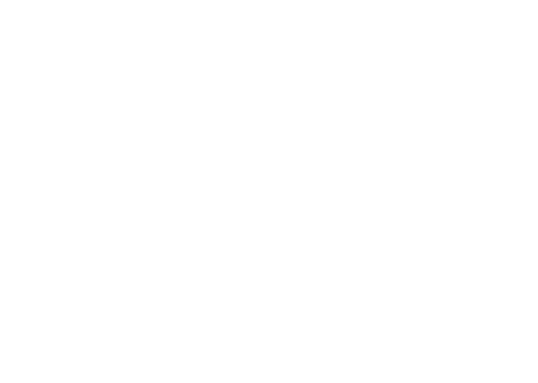 Alan Mirkovich Shop