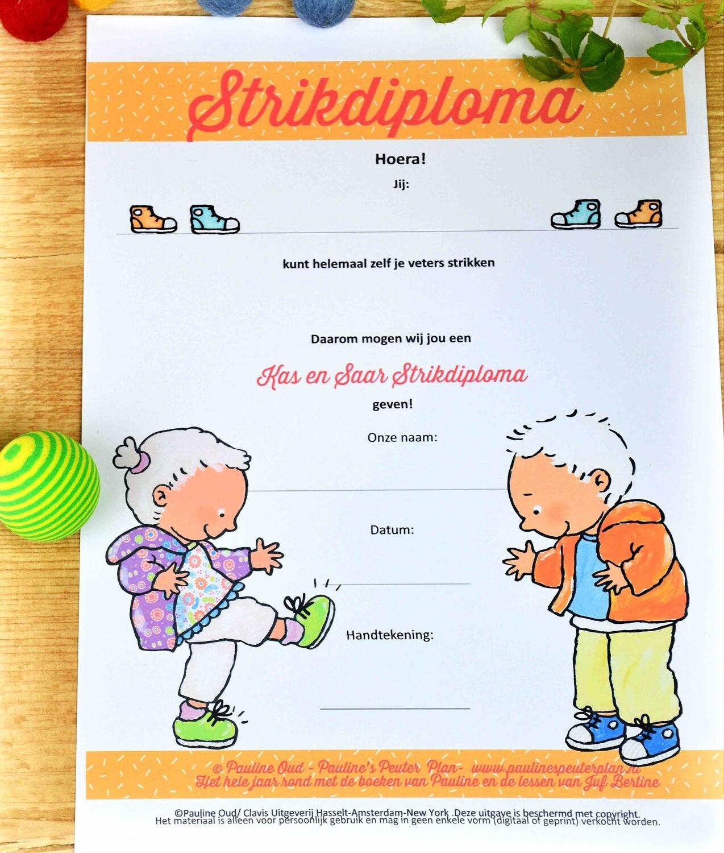 Strik Diploma