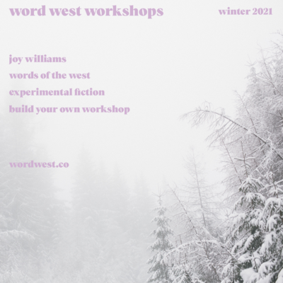 short fiction workshop 2: joy williams