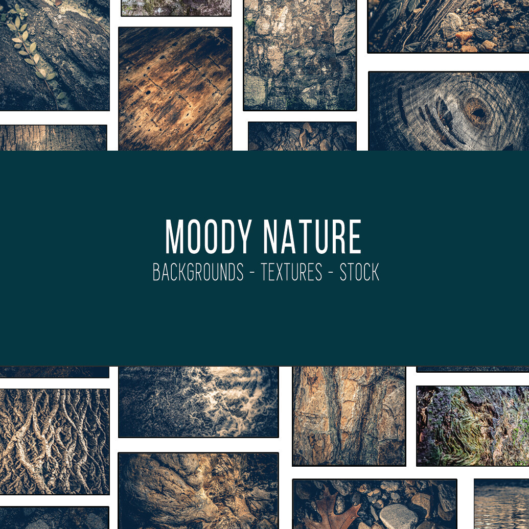 Moody Nature :: Stock Photography Bundle