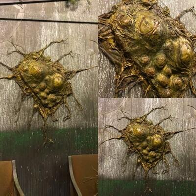 Egg cluster