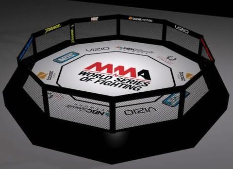 MMA Mixed Martial Arts Decagon without catwalk