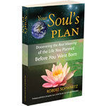 Your Soul's Plan ysp