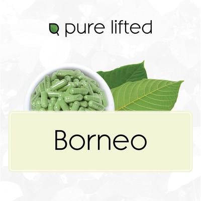 Borneo Strains (Kratom Capsules)