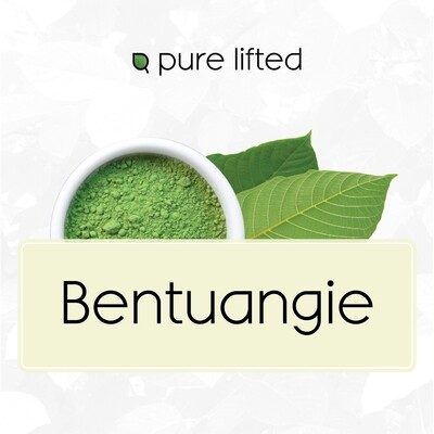 Bentuangie (On Sale Kratom Powder)