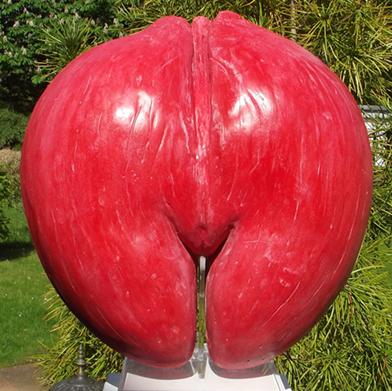 Coco de Mer love red