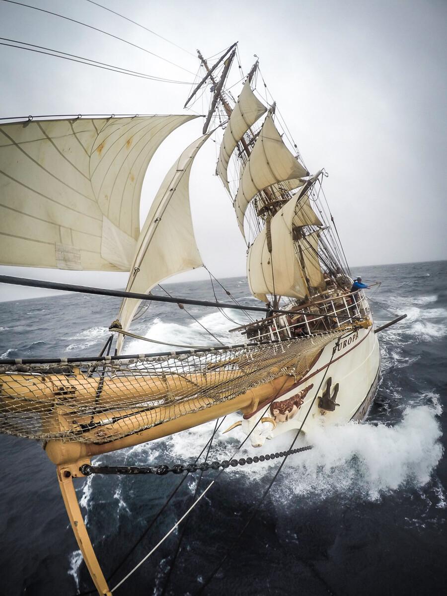Bark Europa Scotia Sea - Print