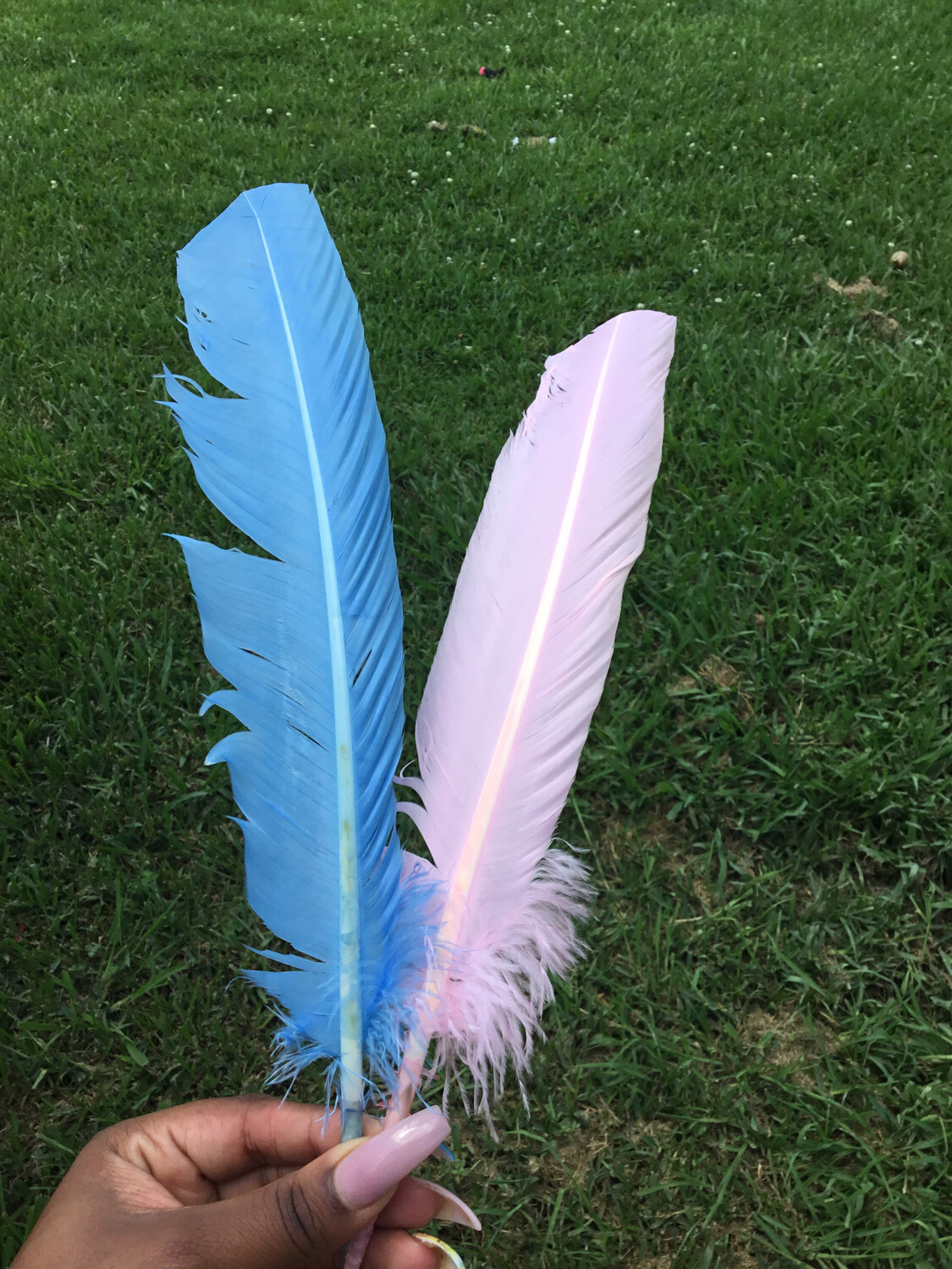 Turkey Feather 11-13""