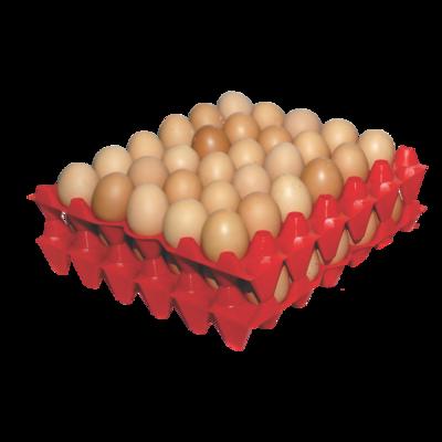 Bandeja para huevos