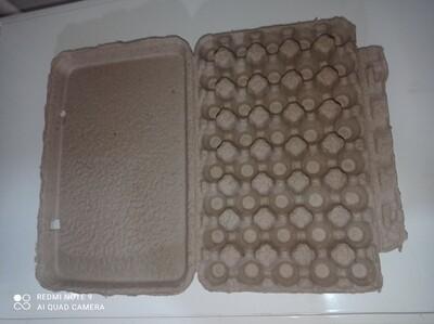 Cartones para Huevos de Codorniz (40 uds.)
