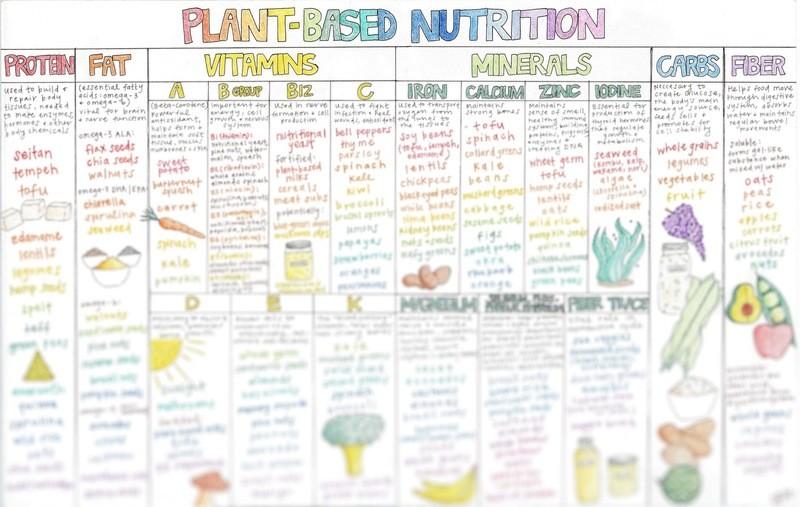 Plant-based Nutrition Chart (PDF)