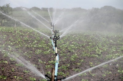 Préserver la ressource en eau grâce à des pratiques agronomiques et fertilisantes adaptées (04 mars - Labergement St Marie)