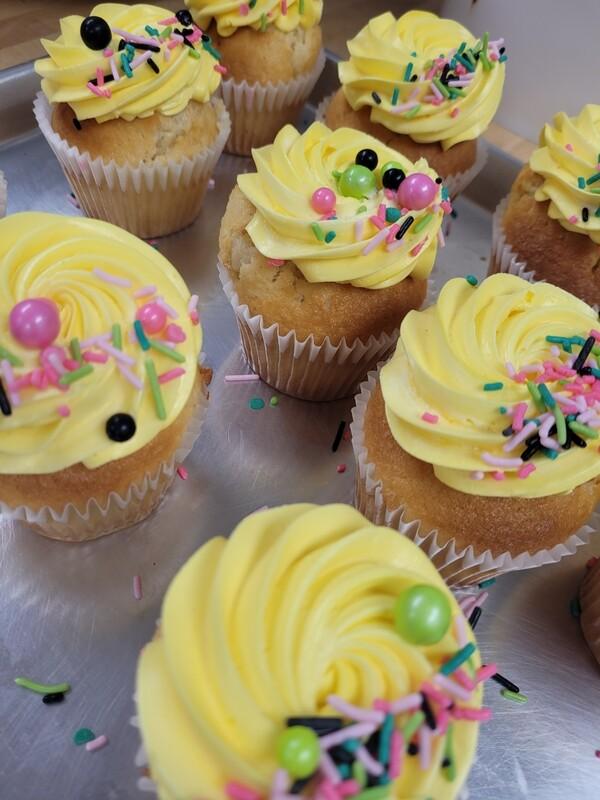 Basic cupcake 6 packs