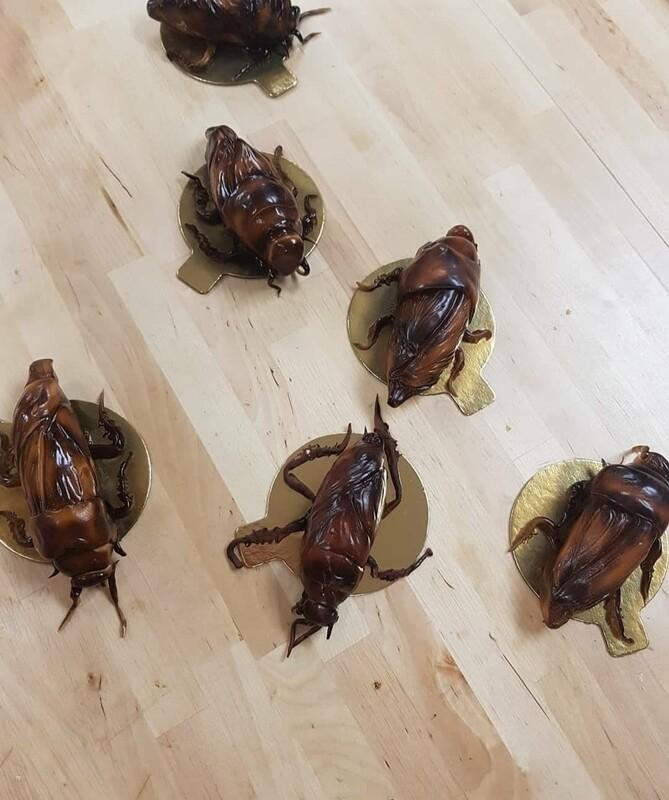 Crack roaches