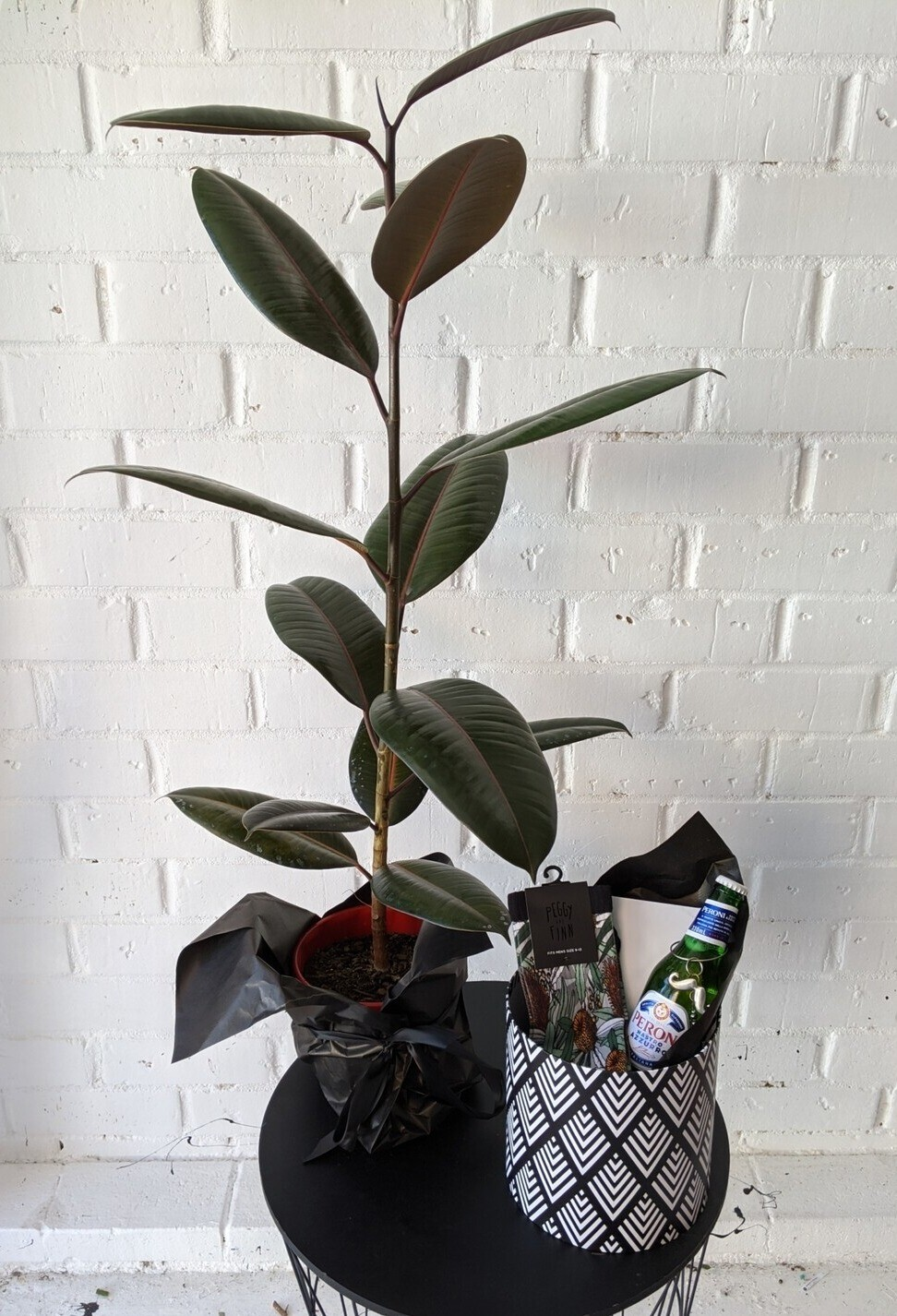 Plant Lovers for Him (Dark Green)