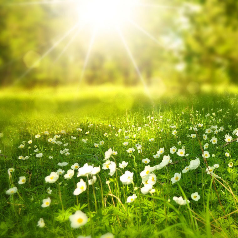 Akashic Sun Meditation - 7 Minutes to Peace