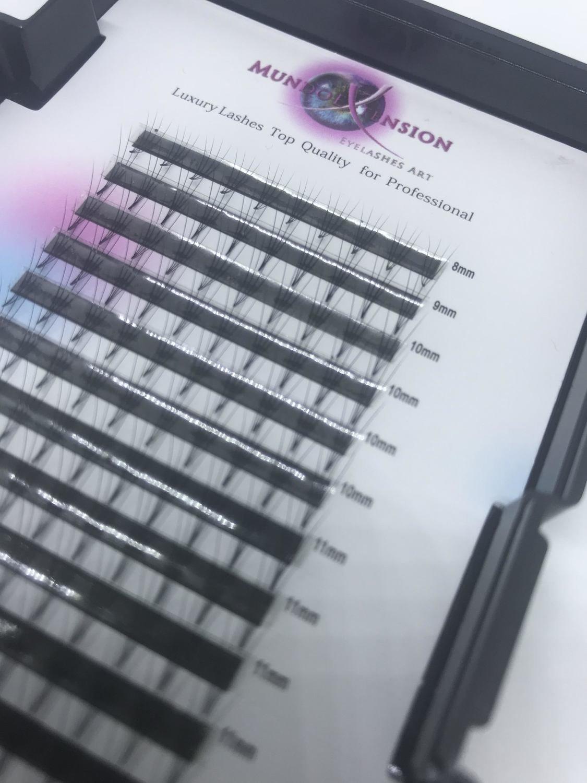 NEW. 3d-6d Ready (ciglia pronte) per tecnica volume Russo CURVA  C-d