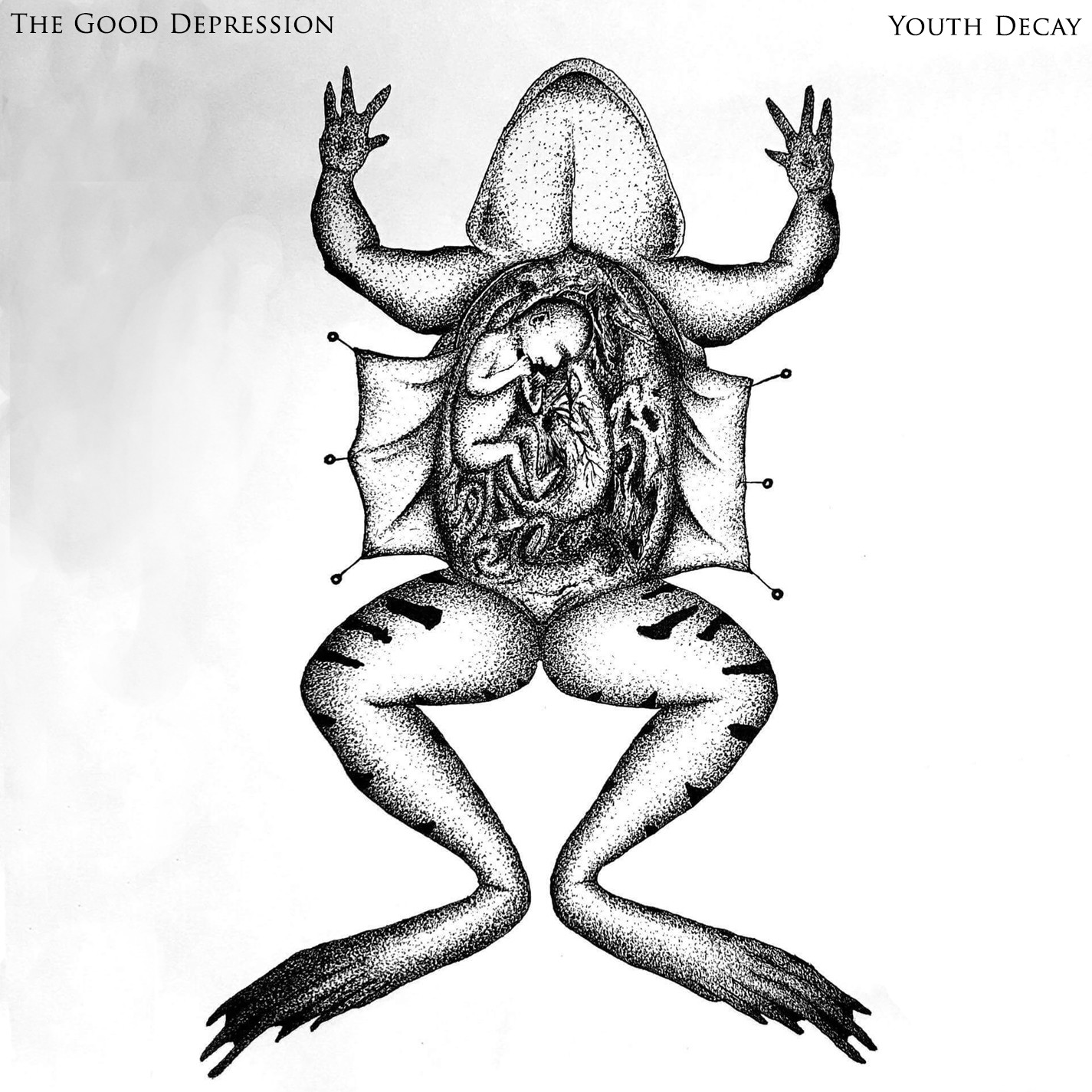 Youth Decay CD