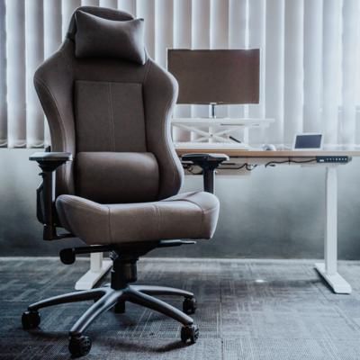 EVIS Smart Desk + Bizio Bundle