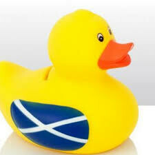Rubber Duck Money Box Scotland
