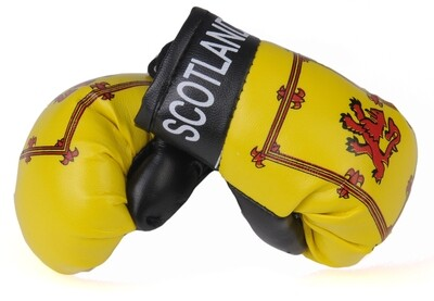 Mini Boxing Gloves Scotland Lion