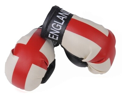 Mini Boxing Gloves England