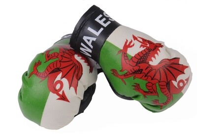 Mini Boxing Gloves Wales