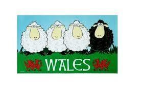 Welsh Sheep Tea Towel