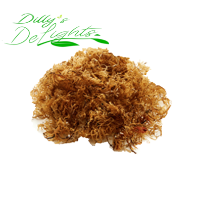 1oz Jamaican Raw Irish Sea Moss ( Ocean Grown and Sourced weighed wet  )