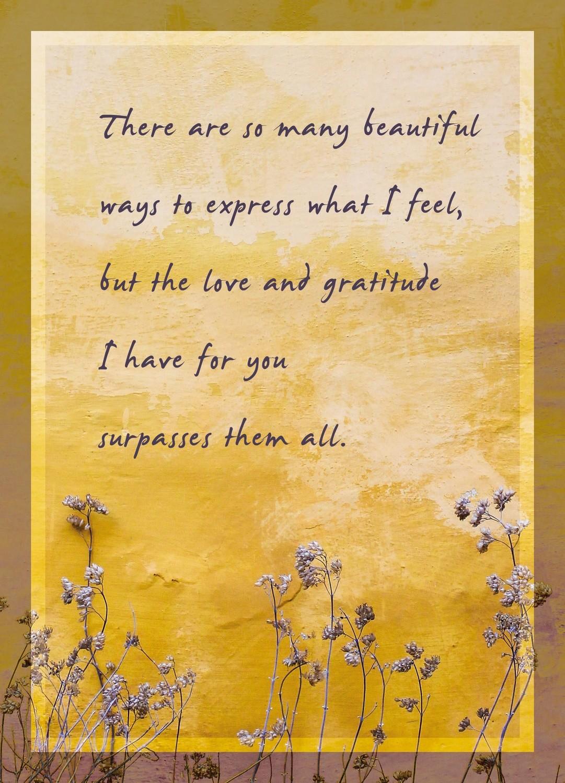 Premium Gratitude Cards: Yellow Wall/Purple Flowers