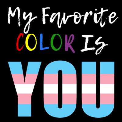 My Favorite Color - Transgender Pride T-Shirt