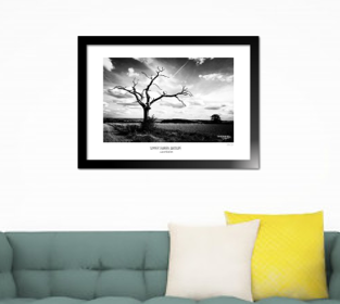 ANNIVERSARY SPECIAL! 'SUMMER'S BARREN LANDSCAPE'  Limited Edition Print