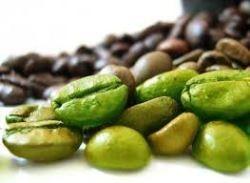 Coffee Green Beans (Fairtrade)