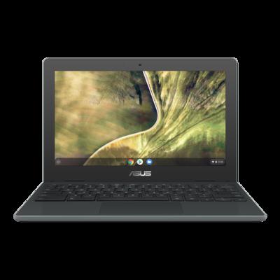 ASUS C204 11.6-inch Chromebook