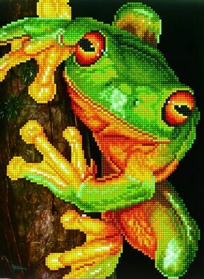 Diamand Dotz Green Tree Frog