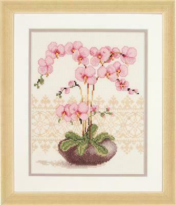 Vervaco Orchidee