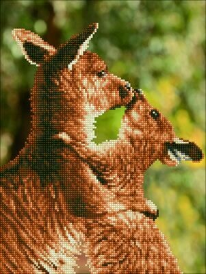 Diamand Dotz Kissing Kangas