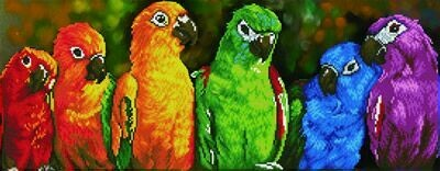 Diamand Dotz Rainbow Parrots