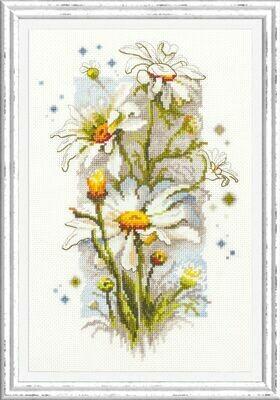 Chudo-Igla White Daisies